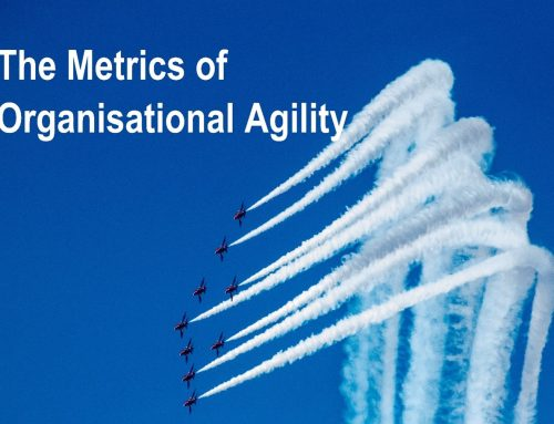 Organisational Agility – How high is the bar we need to jump?